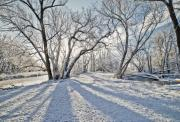 Winter Storm Photo Originals - Snow Shadows by James Steele