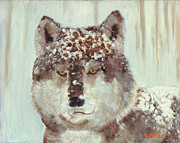 Realistic Wolf Framed Prints - Snow Wolf Framed Print by Terry Lewey