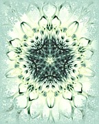 Dahlias - Snowflake by Cathie Tyler