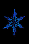 Hexagons Photos - Snowflake Crystal by Science Source