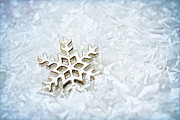Twinkle Photo Framed Prints - Snowflake Framed Print by Darren Fisher