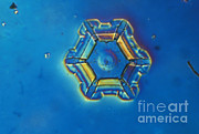 Hexagons Acrylic Prints - Snowflake Acrylic Print by Eric Grave