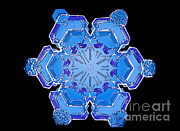 Hexagons Acrylic Prints - Snowflake From A Resin Cast Acrylic Print by Science Source