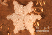 Coin Prints - Snowflake On Coin Print by Ted Kinsman