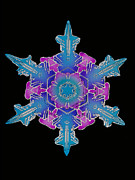 Hexagons Photos - Snowflake by Science Source
