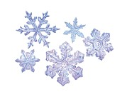 Crystalline Art - Snowflakes, Artwork by Gary Hincks