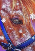 Pony Drawings - Snowflakes by Elena Kolotusha