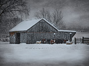 Lamb Framed Prints - Snowflakes on the Farm Framed Print by Robin-Lee Vieira