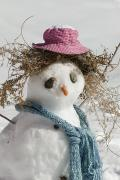 Humorous Photographs Prints - Snowman With A Carrot Nose, Fake Hair Print by Rich Reid