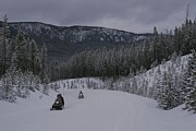 Winter Road Scenes Photo Prints - Snowmobilers In Yellowstone National Print by Raymond Gehman