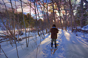 Allan MacDonald - Snowshoe into Winter