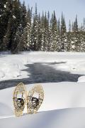 Snowshoes Prints - Snowshoes By Snowy Lake Lake Louise Print by Michael Interisano