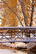 Autumn Prints Prints - Snowy Autumn Walking Bridge Print by James Bo Insogna