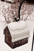Crook Photos - Snowy Birdhouse 2 by Douglas Barnett