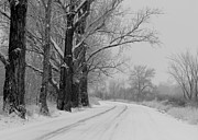Old Country Roads Prints - Snowy Country Road - Black and White Print by Carol Groenen