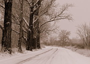 Snowy Art - Snowy Country Road - Sepia by Carol Groenen