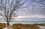 Winter Sky Posters - Snowy Lake Poster by Scott Norris