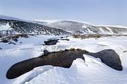 Snowy Landscape, Scotland Print by Duncan Shaw