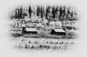 Log Cabin Digital Art Prints - Snowy Log Cabins at Valley Forge Print by Bill Cannon