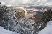 Snowstorm Art - Snowy Morning at the Grand Canyon by Sandra Bronstein