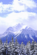 Rocky Mountains Photos - Snowy mountain by Elena Elisseeva