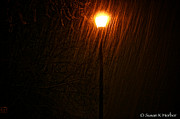Snowy Night Photos - Snowy Night by Susan Herber