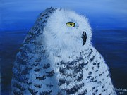 Snowy Night Paintings - Snowy Owl by Don Hutchison