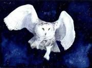 Snowy Night Paintings - Snowy Owl by Sue Homer