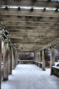Snow Scenes Metal Prints - Snowy Pillars Metal Print by Emily Stauring