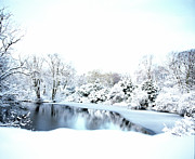 Dk Prints - Snowy Pond Print by Jan Faul
