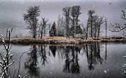 Roger Lewis Metal Prints - Snowy Reflections Metal Print by Roger Lewis