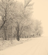 Snow Scene Metal Prints - Snowy Road Metal Print by Julie Lueders