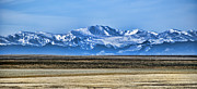 Front Range Art - Snowy Rockies by Heather Applegate