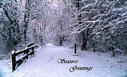 Christmas Cards Art - Snowy Trail Seasons Greetings by Skip Willits
