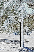 Winter Prints Digital Art Posters - Snowy Tree Poster by Lisa Stanley