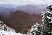 Vista Photos - Snowy Vista - Grand Canyon by Larry Ricker