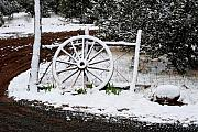 Wagonwheel Prints - Snowy Wagonwheel Print by Jon Rossiter