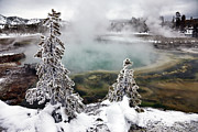 Mountain Scene Photo Prints - Snowy Yellowstone Print by Jason Maehl