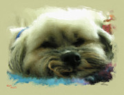 Puppy Mixed Media - So Tired by Adam Vance
