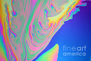 Soap Bubble Prints - Soap Film Print by Ted Kinsman