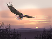 Eagle Paintings - Soaring Free by Paul Sachtleben