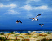 Ocean Paintings - Soaring Over The Banks by Diane Kraudelt