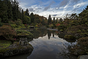 Japanese Garden Photos - Soaring Skies in the Garden by Mike Reid