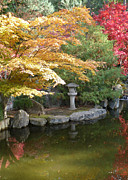 Japanese Lantern Prints - Soft Autumn Pond Print by Carol Groenen