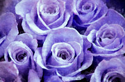 Lavender Mixed Media - Soft Lavender Roses by Angelina Vick