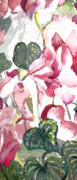"\""flora Prints\\\"" Prints - Soft Pink Print by Mindy Newman"