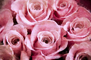 Light Pink Roses Prints - Soft Pink Roses Print by Angelina Vick