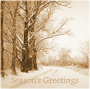 Snowy Trees Prints - Soft Sepia Seasons Greetings Print by Carol Groenen