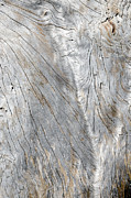 Contours Photos - SOFT VALLEY weathered wood made smooth by the elements by Andy Smy