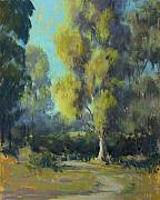 Morning Pastels - Softly Lit Afternoon by Timon Sloane